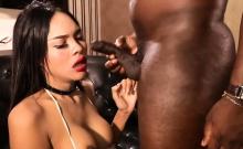 Thai ladyboy interracial bareback anal with a black guy