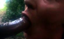 Outdoor cum swallow